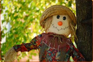 scarecrow-main